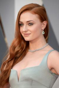 88. Oscar Ödül Töreni'ni Tiffany'nin 2016 Blue Book mücevherleri aydınlattı