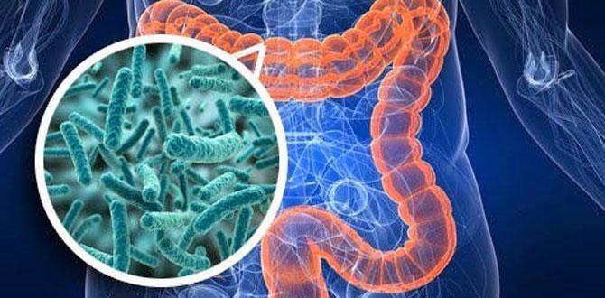 Yeni organ Mikrobiyota, İSÜ 1. Mikrobiyota Günleri'nde tartışılıyor!