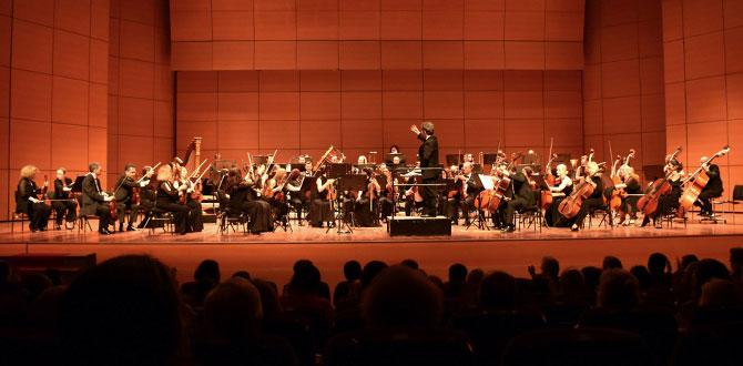 İstanbul Devlet Senfoni Orkestrası Keman Sanatçısı Domenico Nodio'ya eşlik edecek…