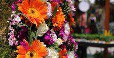 Sonbaharın çiçekleri etnik tasarım ile bir araya geliyor…