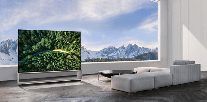 LG, 8K OLED ve NanoCell TV'lerini global pazara sunuyor…