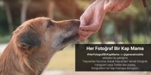General Mobile'dan sokak hayvanları için anlamlı kampanya…