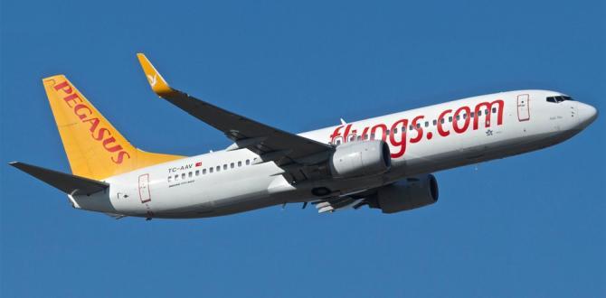 Pegasus Hava Yolları'nın ilk tahvil ihracı başarıyla gerçekleştirildi