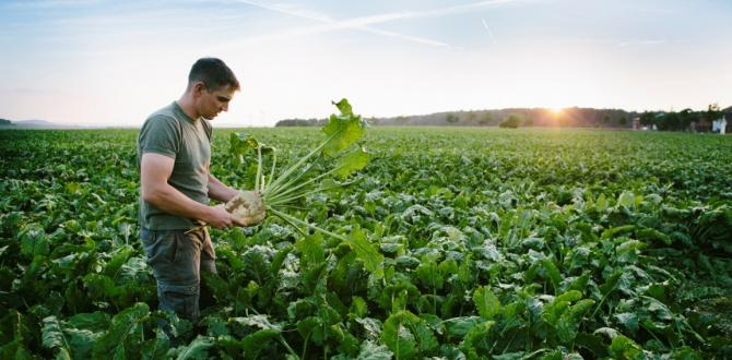 Tüketicilerin yüzde 60'ı yiyecek ve içeceklerinin çevre üzerindeki etkisine duyarlılık gösteriyor.